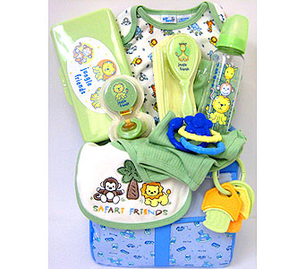 BabyGB68 ''Safari Friends'' Baby Gift Basket in Oklahoma City OK, Array of Flowers & Gifts