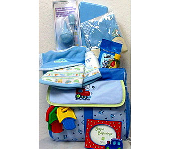 BabyGB61 ''Bright Beginnings'' Baby Boy Gift Basket in Oklahoma City OK, Array of Flowers & Gifts