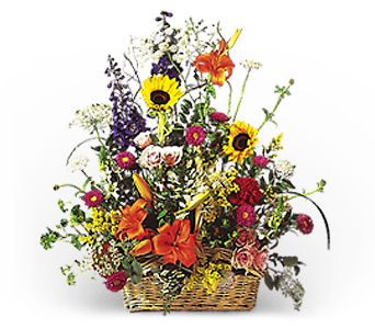 Glory in a Basket in Bismarck ND, Dutch Mill Florist, Inc.