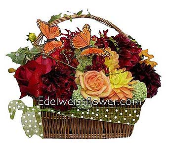 Butterflies & Flowers, Flower Bouquet in Santa Monica CA, Edelweiss Flower Boutique