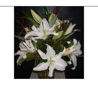 White Lily Mix in Dallas TX, Z's Florist
