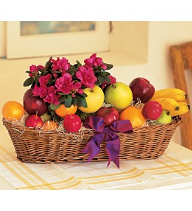 Plant and Fruit Basket in Medford NY, Sweet Pea Florist