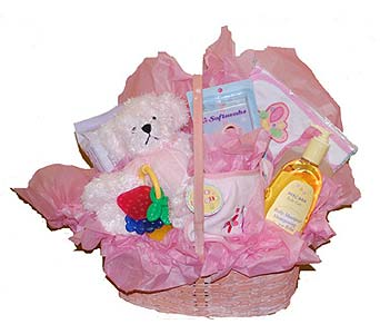 Baby Gift Basket in Pink in Scarborough ON, Helen Blakey Flowers