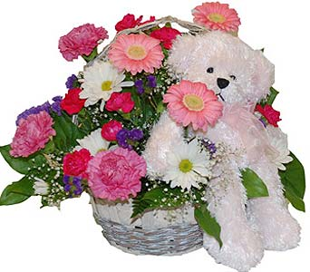 Flower arrangement with Pink Bear in Scarborough ON, Helen Blakey Flowers