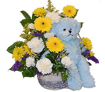 Flower arrangement with Blue Bear in Scarborough ON, Helen Blakey Flowers