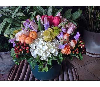 AF-003 in Santa Monica CA, Ann's Flowers