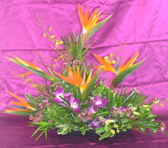 Hawaiian Paradise in Port St Lucie FL, Flowers By Susan