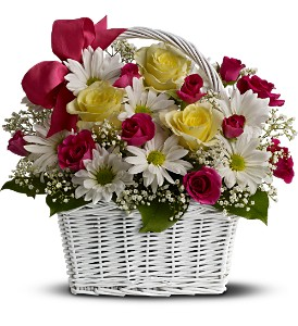 Daisy Dreams Basket in Hilton NY, Justice Flower Shop