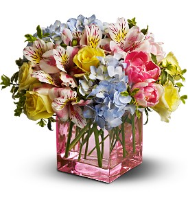 Teleflora's Spring Sweetness in Bonita Springs FL, Bonita Blooms Flower Shop, Inc.