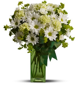 St. Patrick's Day-zies by Teleflora in Hilton NY, Justice Flower Shop