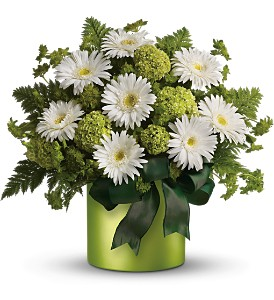 Teleflora's Luck of the Irish in Dubuque IA, New White Florist