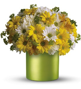 Teleflora's Hello Sunshine in Dubuque IA, New White Florist