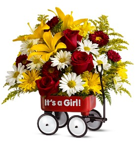 Teleflora's Baby's First Wagon - Girl - Deluxe in Broomall PA, Leary's Florist