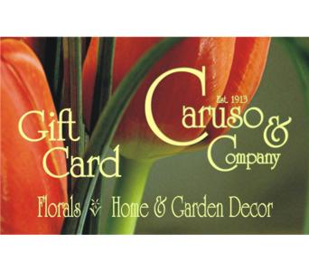 Gift Card in Aurora ON, Caruso & Company