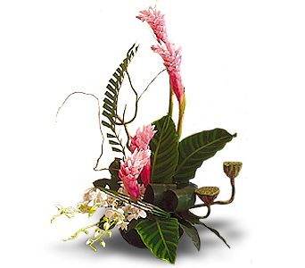 Memories of Maui in Dripping Springs TX, Flowers & Gifts by Dan Tay's, Inc.