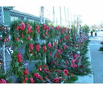 Christmas Wreaths in Brooklyn NY, David Shannon Florist & Nursery