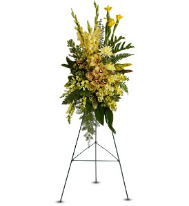 Sunshine Spray in Burlington NJ, Stein Your Florist