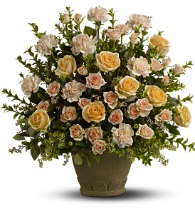 Teleflora's Rose Remembrance in Tampa FL, Moates Florist