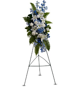 Ocean Breeze Spray in Burlington NJ, Stein Your Florist