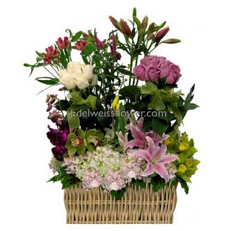 Basket Full of Posies Flower Bouquet in Santa Monica CA, Edelweiss Flower Boutique