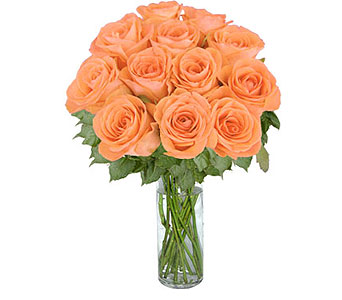 12 Peach Long Stem Roses in Pleasanton TX, Pleasanton Floral