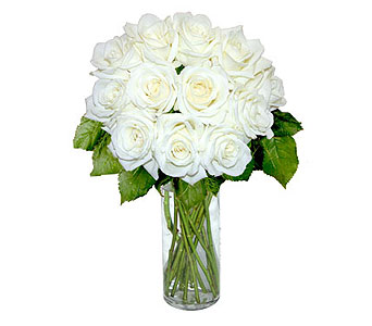 12 White Long Stem Roses in Pleasanton TX, Pleasanton Floral