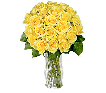 24 Yellow Roses in Pleasanton TX, Pleasanton Floral