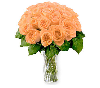 24 Peach Roses in Pleasanton TX, Pleasanton Floral