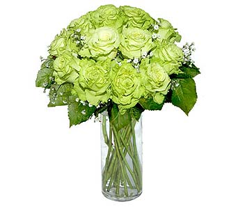 12 Super Green Roses in Pleasanton TX, Pleasanton Floral