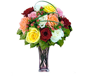 12 Mixed Designer Long Stem Roses in Pleasanton TX, Pleasanton Floral