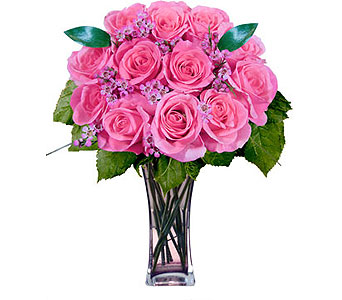 12 Pink Designer Long Stem Roses in Pleasanton TX, Pleasanton Floral