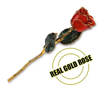 Real Gold Rose in Aston PA, Blair's Florist