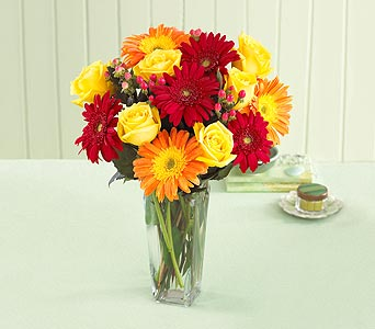 Best Wishes Rose and Daisy Bouquet with Vase in Chapel Hill NC, Floral Expressions and Gifts