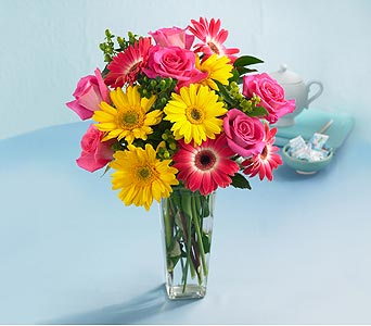 Good Times Rose and Daisy Bouquet with Vase in Chapel Hill NC, Floral Expressions and Gifts