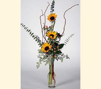 Sunflower Vase in Southampton PA, Domenic Graziano Flowers