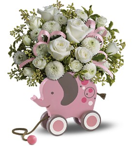 MiGi's Baby Elephant Bouquet by Teleflora - Pink in Lockport NY, Gould's Flowers & Gifts