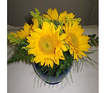 Simply Sunflowers in New Paltz NY, The Colonial Flower Shop