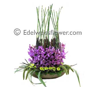 Zen Calm Orchids Flower Bouquet in Santa Monica CA, Edelweiss Flower Boutique