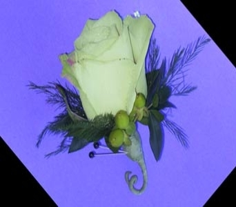 Green Rose Boutonniere in Raleigh NC, North Raleigh Florist