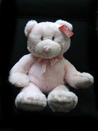 My First Teddy-Pink in Walkerton ON, Flowers By Usss