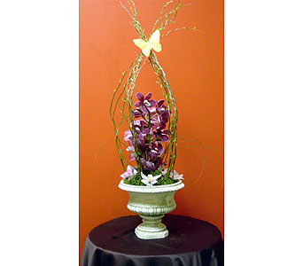 Orchid Urn in Massapequa Park NY, Bayview Florist & Montage  1-800-800-7304