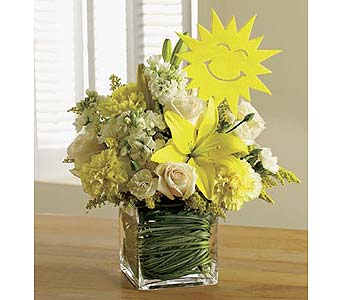 It's Your Sunny Day™ dans Watertown CT, Agnew Florist