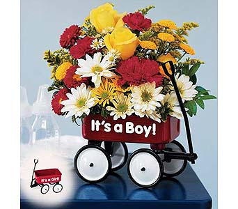 TN Baby's First Wagon Bouquet Boy in St. Louis MO, Walter Knoll Florist