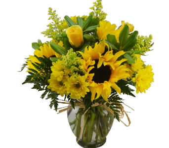 GOLDEN SUNFLOWERS Deluxe in Port St Lucie FL, Flowers By Susan