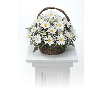 Basket Arrangement in Arlington TX, H.E. Cannon Floral & Greenhouses, Inc.