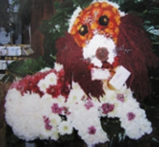 Dog in West Nyack NY, West Nyack Florist