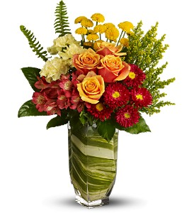 Teleflora's Cosmic Blooms in Toronto ON, Verdi Florist