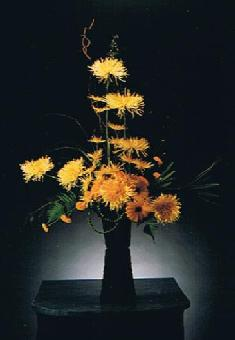 Modern Yellow Chrysanthemums in Ottawa ON, The Fresh Flower Company