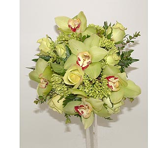 Green orchids and green roses in Worcester MA, Herbert Berg Florist, Inc.