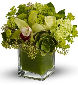 Teleflora's Rainforest Bouquet in Oshkosh WI, Flowers & Leaves LLC